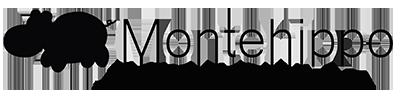 蒙特河马中国站 | Montehippo Montessori